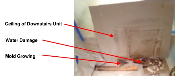 mold-on-ceiling-san-diego-ca